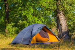 Touristic tent in a forest Royalty Free Stock Photos