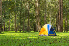 Touristic tent in forest, Thailand Royalty Free Stock Photos