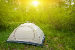 Touristic tent in a forest Royalty Free Stock Image