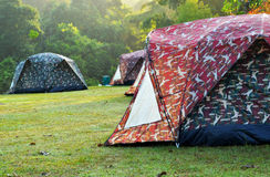 Touristic tent in a mist forest. At morning time Royalty Free Stock Image