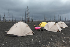 Touristic tents in Dead Wood on Kamchatka Peninsula Stock Photo