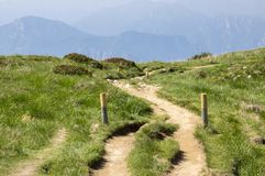 Touristic trail Alta Via del Monte Baldo, ridge way in Garda Mountains, wooden sticks defining the permitted way. Green grass, summer scenery Stock Image