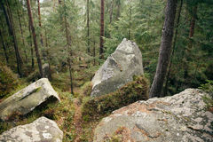 Touristic trail  with mountain landscape of rocks in green spring forest in Carphatian Royalty Free Stock Photos