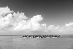 Touristic yachter som svävar nära den gröna ön på Key West, Florida Royaltyfria Bilder