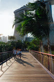 Touristis walking at the Gardens By The Bay park Stock Photos