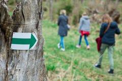 Touristisch auf gehender Spur im Th forrest - grüner Pfeil stockfoto