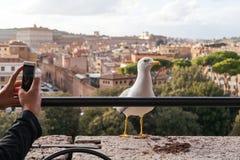 Touristisch, ein Foto in Rom machend stockfotos