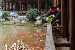 Touristische dekorative Goldfisch-EInecke des Parks Stockfoto