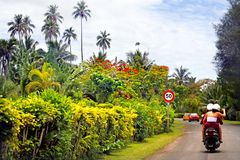 Touristische Fahrroller auf Rarotonga-Küstenringstraße im Koch Stockfotografie