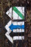 Touristische Hinterpfeile auf Baumbarke Lizenzfreie Stockfotos