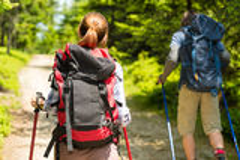 Touristische Paare, die im Wald wandern Lizenzfreie Stockfotos