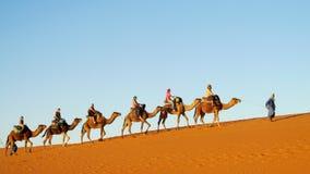 Touristische Safari auf Kamelen in der Wüste Stockbild