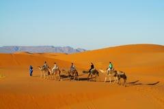 Touristische Safari auf Kamelen in der Wüste Lizenzfreies Stockfoto