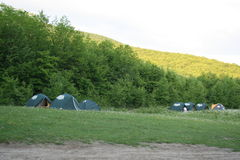 Touristische Zelte im Wald am Campingplatz lizenzfreie stockfotografie