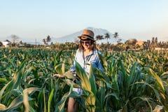 Touristischer Reisender der jungen Frau mit Strohhut auf Getreidefeld auf einem Vulkan Agungs-Hintergrund zur Sonnenuntergangzeit stockbild