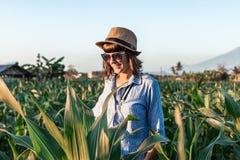 Touristischer Reisender der jungen Frau mit Strohhut auf Getreidefeld auf einem Vulkan Agungs-Hintergrund zur Sonnenuntergangzeit lizenzfreie stockfotografie