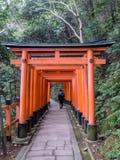 Touristisches Überschreiten durch orange Torii stockfotografie