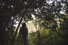 Touristisches Gehen und Trekking der Frau im tropischen Wald stockfotografie
