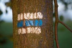 Touristisches Zeichen auf dem Baum Lizenzfreies Stockfoto