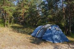 Touristisches Zelt in einem Kiefernwald Lizenzfreies Stockfoto