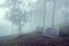 Touristisches Zelt im Wald mit Nebel Lizenzfreie Stockfotos