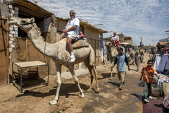 Tourists aboard camels in the Nubian village of Garb-Sohel in the Aswan region of Egypt. Stock Photos
