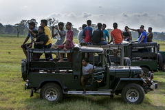 Tourists aboard jeeps in the Kaudulla National Park at Gal Oya Junction in central Sri Lanka. Stock Photos