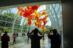 Tourists admire the Glass flowers Royalty Free Stock Photos