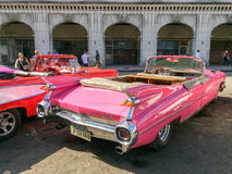 Tourists admiring vintage american classic cars parked in Havana, Cuba Royalty Free Stock Photos
