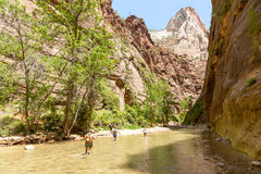 Tourists along the Virgin River Royalty Free Stock Image