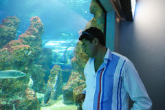 Tourists at Aquarium - Barcelona, Spain. Aug. 19 2014, Tourists watches Fishes and enjoy in Aquarium in Port of Barcelona, Spain Stock Photography