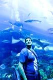 Tourists at Aquarium Dubai Stock Image