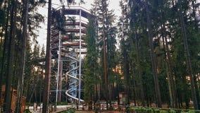The Trail Trees Lipno Lookout, Czechia stock photography