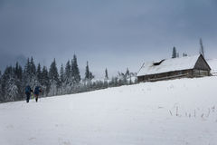 Tourists with backpacks hiking in the winter mountains. stock images