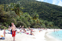Tourists on the beach. A lot of tourists in the famous beach trunk bay at st. john island in american virgin islands Royalty Free Stock Image