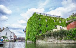Tourists in the boat on the canal and historical building covered in leafs, Cambridge, England, 21st of May 2017 stock photography