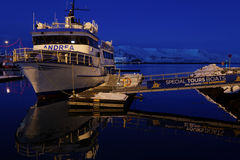 Tourists boat at night in Reykjavik harbor Royalty Free Stock Photo