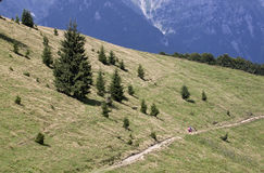 Tourists in Bucegi mountains - RAW format Royalty Free Stock Photo
