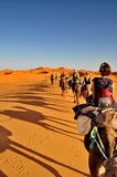 Tourists in a Camel caravan Stock Image