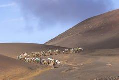 Tourists on a camel safari Stock Photo