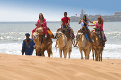 Tourists on camels - Morocco Essaouira Beach Stock Images