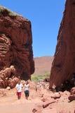 Tourists in the canyon of Natural reserve Quebrada de las Conchas en Argentina royalty free stock image