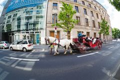 Tourists on a carriage ride Stock Image