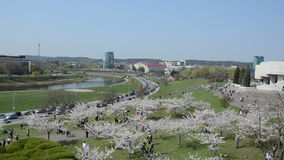 Tourists and citizens people enjoy leisure in spring cityspace stock video footage