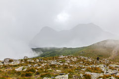 Tourists climb to the top of Hoverla Stock Photos