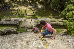 Tourists Climbing Down Mayan High Temple in Lamanai, Belize Royalty Free Stock Photography