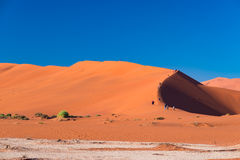 Tourists climbing the scenic sand dunes in Sossusvlei, Namib Naukluft National Park, best tourist and travel attraction in Namibia. Adventure and exploration Royalty Free Stock Images