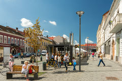 Tourists In Cluj Napoca Downtown Royalty Free Stock Image