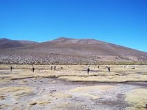Tourists contemplating beautiful desert landscapes of the Bolivian altiplano royalty free stock photo