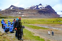 Tourists and courios and funny Penguins in Gold Harbour, South Georgia. People photographing and watching the wildlife. Antarctica